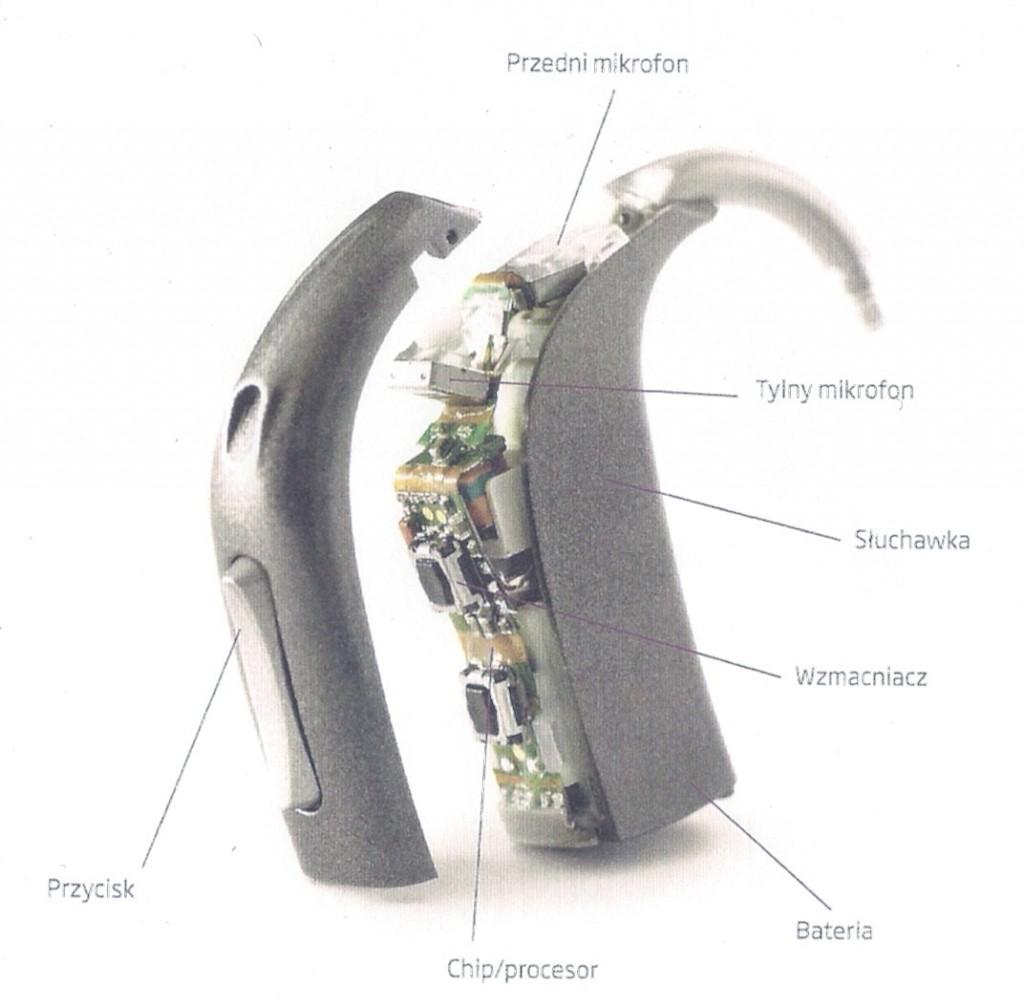 Budowa aparatu słuchowego
